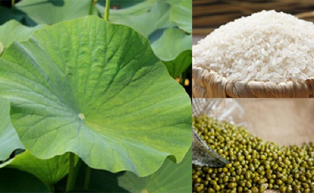 Giảm cân hiệu quả bằng món cháo lá sen tươi và gạo tẻ