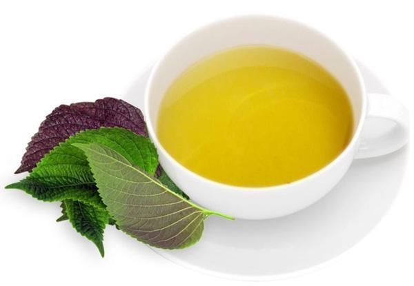 Trà tía tô chứa tinh dầu, giúp giảm viêm đau
